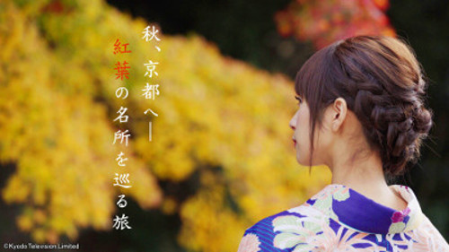PSVRソフト「日本驚嘆百景 京都〜美しき紅葉の秘密〜」