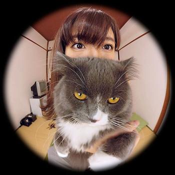 VRアイドル動画新作「麻衣阿と猫」