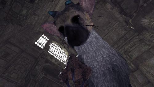 PSVRおすすめゲームランキング「人喰いの大鷲トリコ」