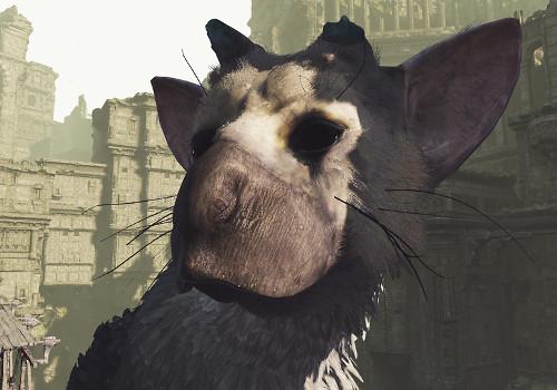 PSVR版「人喰いの大鷲トリコ」が無料配信開始!VRでトリコの世界を体感できる!