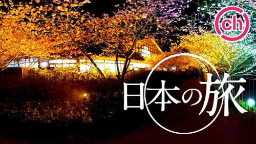 360channelの日本の旅動画