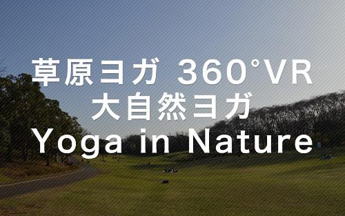 ヨガの無料VR動画